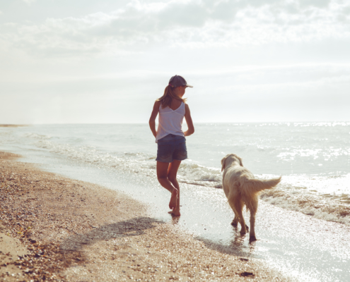 Dog Nanny Riviera running along a beach shore with a golden retriever during the early morning, in the Lerins Islands.