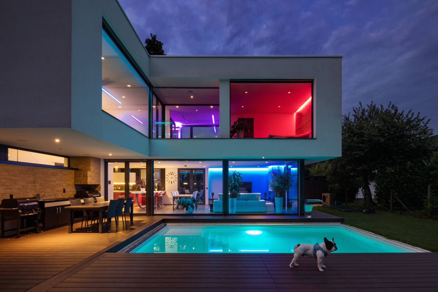 Dog Sitting in a Modern villa with Dog Nanny Riviera for an adorable French Bulldog.