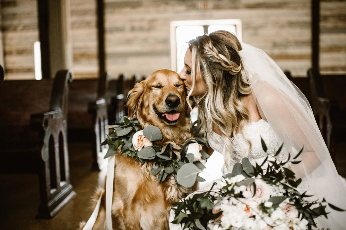 Dog, golden retriever, guest of honor or dog of honor, attending the wedding of his mama, chaperoned by Dog Nanny Riviera.