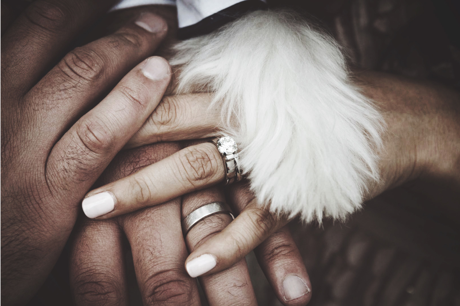 Photographie of hands wearing wedding rings and dog's paw